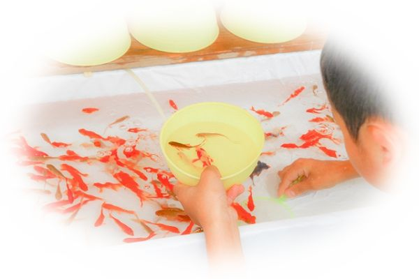 金魚すくいをしている夢