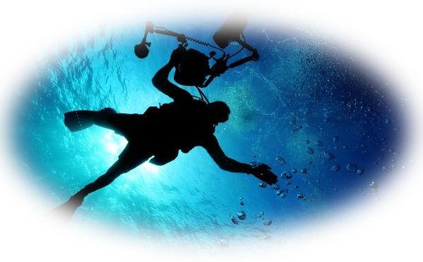 海で泳ぐ夢