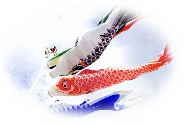 鯉のぼりを見る夢