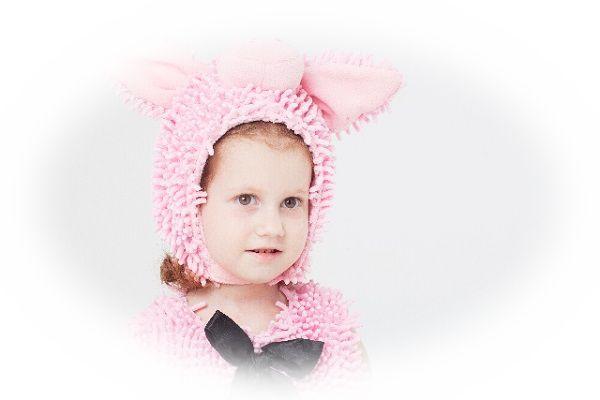 豚のような人物を見る夢