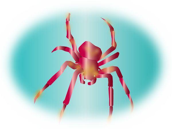 毒蜘蛛や気味の悪い蜘蛛を見る夢
