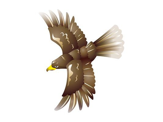 金の鷲を見る夢