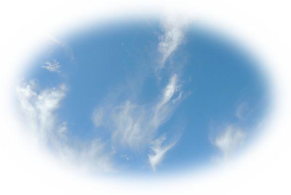 蝶々が大空をバックに飛んでいる様子を見る夢