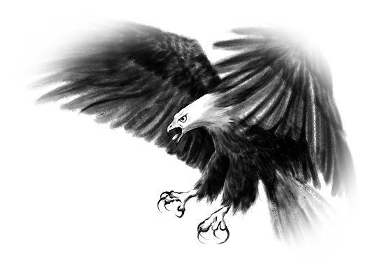 鷲につかまれる夢(鷲にさらわれる夢)
