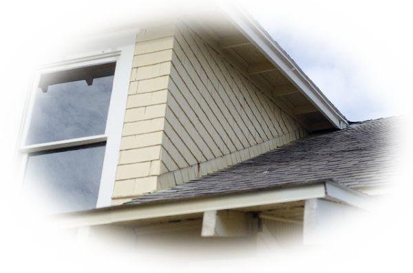 鷹が木や家の屋根の上にとまる様子を見る夢