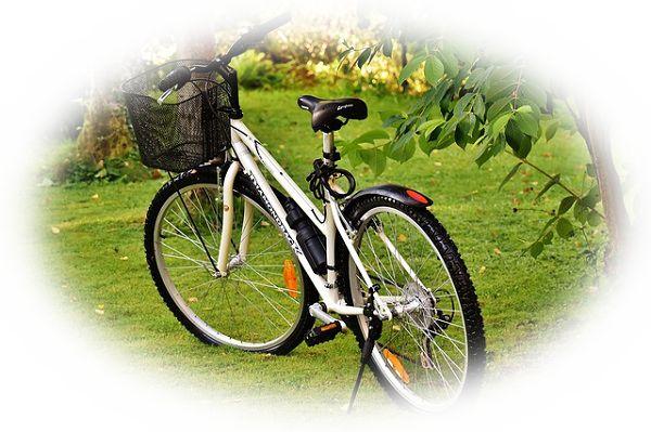 山道を自転車で走る夢(山道をマウンテンバイクで走る夢)