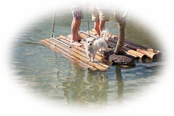 湖で頼りないボートを漕いでいる夢(湖で誰かと一緒に頼りないボートを漕いでいる夢)
