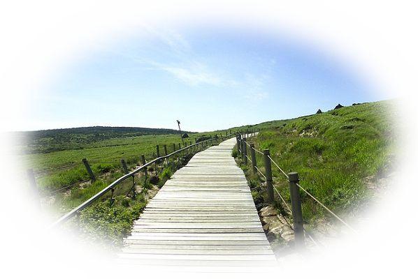 夢占い山道の夢の意味24選!目標達成の為の道や課題を表す!