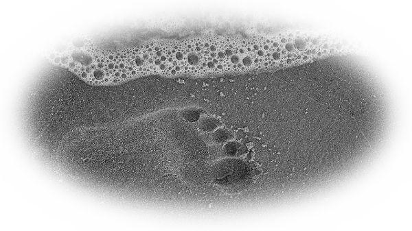 海辺を歩く夢(恋人と海辺を歩く夢)
