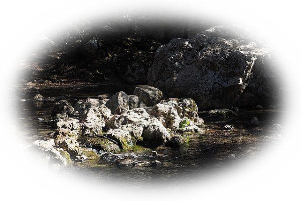 小川や溝に流れる川を見る夢