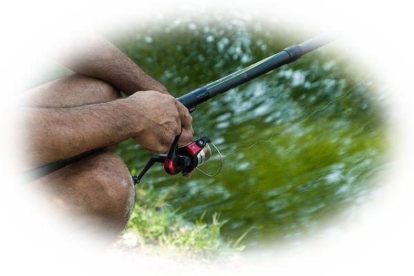 池で釣りをする夢