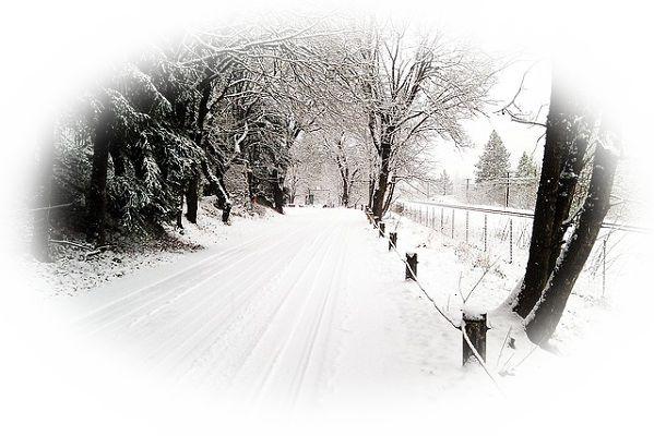 大雪で道に迷う夢