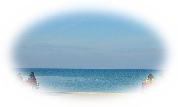 波のない海を見る夢