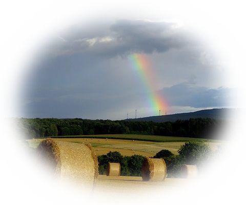 虹が消える夢