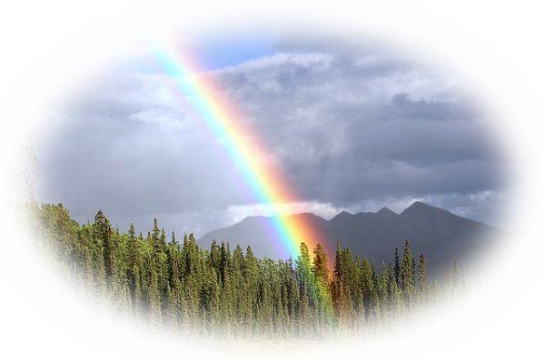 夢占い虹の夢の意味27選!虹を見たら早めの行動がカギ!?