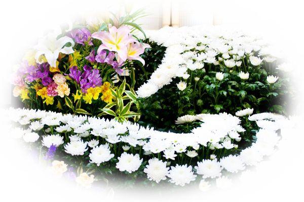 母親が死ぬ夢(母親の葬式、年老いた母親が死ぬ夢)